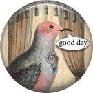 Talking Birds 1 Inch Pinback Button Badge Pin - 4016