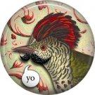 Talking Birds 1 Inch Pinback Button Badge Pin - 4017