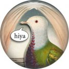 Talking Birds 1 Inch Pinback Button Badge Pin - 4021