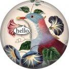 Talking Birds 1 Inch Pinback Button Badge Pin - 4023