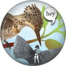 Talking Birds 1 Inch Pinback Button Badge Pin - 4024
