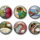 Talking Birds Set of 12 1 Inch Pinback Button Badge Pins - Set 1