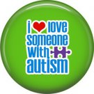 1 Inch I Love Someone with Autism on Green Background Button Badge Pin - 0463