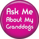 Ask Me About My Granddogs, Dog is Love 1 Inch Pinback Button Badge Pin - 6114