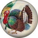 Tom Turkey, 1 Inch Pinback Button of Vintage Thanksgiving Image - 0318