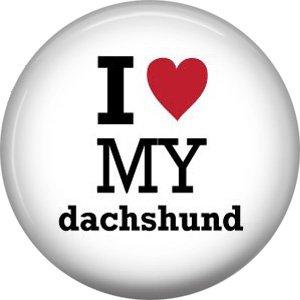 I Love My Dachshund, Dog is Love 1 Inch Pinback Button Badge Pin - 6153