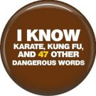 I Know Karate, Kung Fu, and 47 Other Dangerous Words, 1 Inch Button Badge Pin of Fun Phrases - 1513