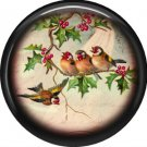 Brown Birds, 1 Inch Pinback Button Badge Pin - 0237