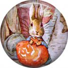 The Tale of Peter Rabbit 1 Inch Pinback Button Badge Pin - 6225