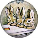 The Tale of Peter Rabbit 1 Inch Pinback Button Badge Pin - 6226