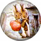 The Tale of Peter Rabbit 1 Inch Pinback Button Badge Pin - 6231