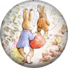 The Tale of Peter Rabbit 1 Inch Pinback Button Badge Pin - 6233