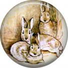 The Tale of Peter Rabbit 1 Inch Pinback Button Badge Pin - 6236