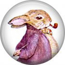 The Tale of Peter Rabbit 1 Inch Pinback Button Badge Pin - 6242
