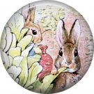 The Tale of Peter Rabbit 1 Inch Pinback Button Badge Pin - 6243