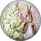 The Tale of Peter Rabbit 1 Inch Pinback Button Badge Pin - 6244