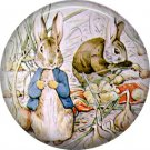 The Tale of Peter Rabbit 1 Inch Pinback Button Badge Pin - 6252