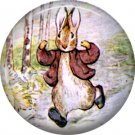 The Tale of Peter Rabbit 1 Inch Pinback Button Badge Pin - 6253