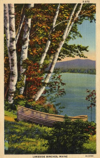 Maine Postcard, Lakeside Birches & Boat, Full Color c.1933