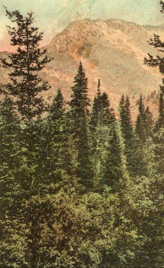 Ogden Canyon Utah Postcard, Hand Colored Landscape c.1922