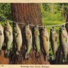 Curtis Michigan Postcard, Ten of a Kind, Fishing Series c.1945