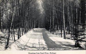 Rapid River Michigan Postcard, Wooded, Snowy Road c.1951