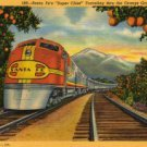 California Postcard, Santa Fe Super Chief Train Traveling Thru The Orange Groves c.1940