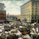 Montgomery Alabama Postcard, Court Square c.1904