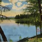 Idaho Postcard, Payette Lake, Full Color c.1948