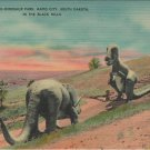 Rapid City South Dakota Postcard, Dinosaur Park in The Black Hills, Full Color c.1940