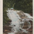 New York Landscape Postcard, Lower Falls at Buttermilk Falls State Park, Finger Lakes Region c.1929