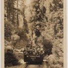 California Postcard, Gravity Ride at Mt. Tamalpais & Muir Woods Railway, Real Photo c.1926