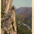 Lake Lure North Carolina Postcard, Devil's Head and Rocky Broad Gorge, Full Color c.1930