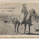 Delaware Ohio Postcard, Shows Cowboy Texas Jack Brooks on Federal Cattle Range c.1927