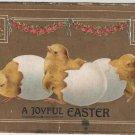 Easter postcard, Trio of Newborn Chicks, A Joyful Easter, Embossed c.1907