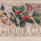 Christmas Postcard, Merrie Xmas Dec. 25th, Birds, Berries and Holly c.1911