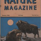 Nature Magazine, Musk Oxen, Blue Hexom Cover c.1946