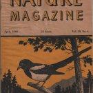 Nature Magazine, Magpie, Yellow Hexom Cover c.1946