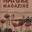 Nature Magazine, Flamingos, Pink Hexom Cover c.1946