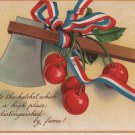 George Washington Bday Postcard, Axe & Cherries c.1909