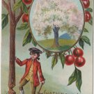 George Washington Bday Postcard, Cherry Trees & Axe c.1908