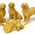 Golden Retriever set/4 - Discount Gifts Online