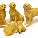 Golden Retriever set/4 - Discount Gifts Online