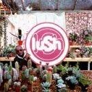 Lovelife - Lush (CD 1996)