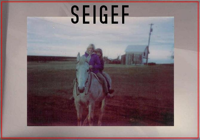 Seigef - CD-R Going Native Records 2010