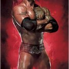 Dwayne Johnson The Rock in wrestling regalia POSTER 23.5 x 34 also movie star