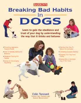 Breaking Bad Habits In Dogs