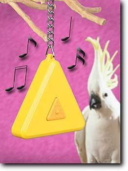 The musical Jukebox Toy (medium To Large Birds)