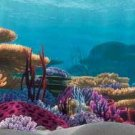 Tetra Disney Aquarium Background - Coral Reef