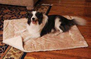 Snoozy Doggie Kitty Blankie Caramel/fleece Medium 27x36